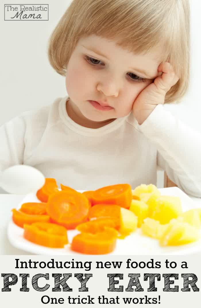 Terakhir dan Terpenting Usaha untuk Memperkenalkan Makanan Baru dan Sehat kepada Si Kecil yang Pilih-Pilih Makanan