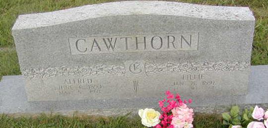 cawthorn