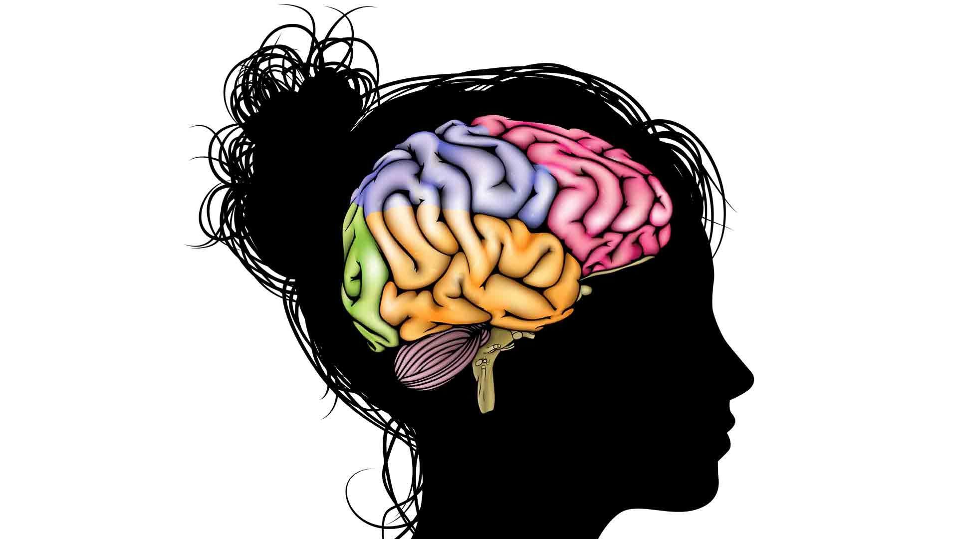 Meningkatkan Fokus atau konsentrasi otak