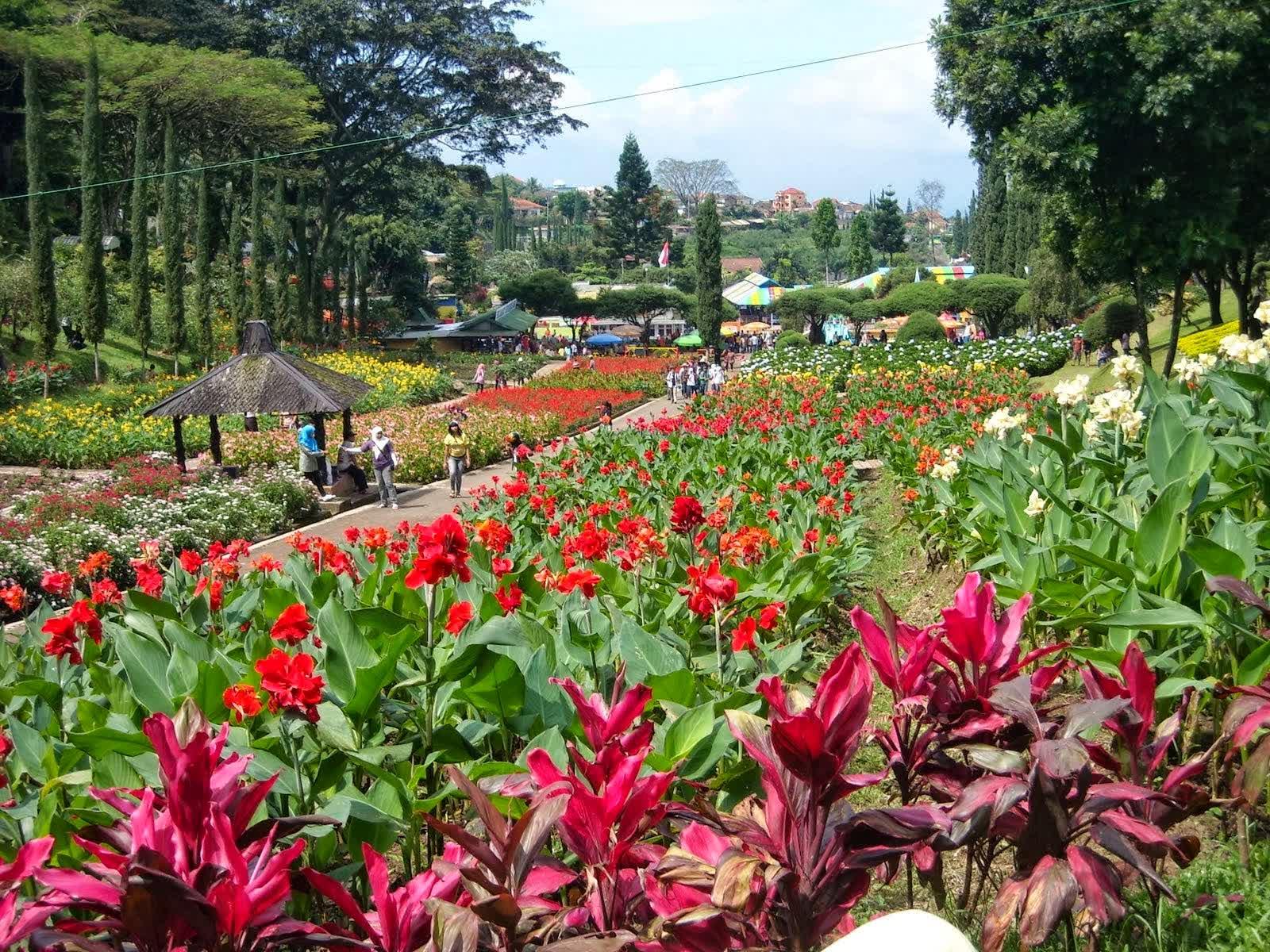 Tomohon Kota Bunga