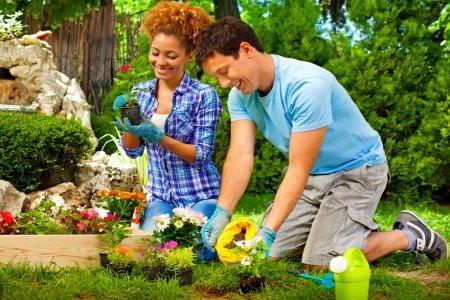 berkebun bersama