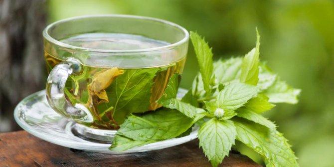 kompres wajah dengan teh hijau