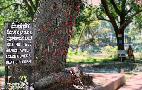 pohon chankiri khmer merah