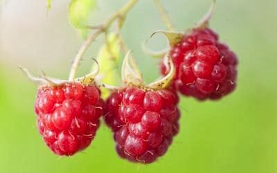buah-raspberry, buah-buahan super kuatkan jantung