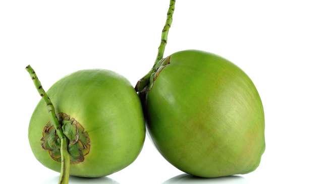 kelapa, manfaat dan macam buah tropis