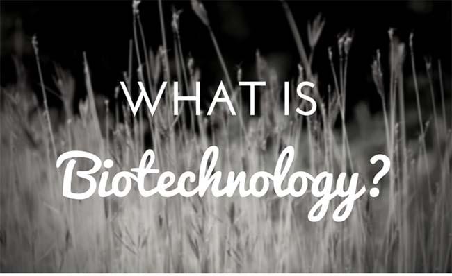 apa itu bioteknologi
