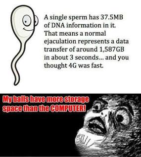 jumlah-sperma