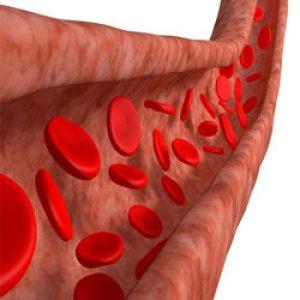 sel-darah-merah-rusak