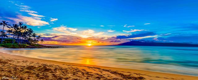 Filosofi Matahari Setia