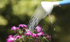 Permalink to 10 Hal yang Dapat Kamu Lakukan untuk Menghemat Penggunaan Air!