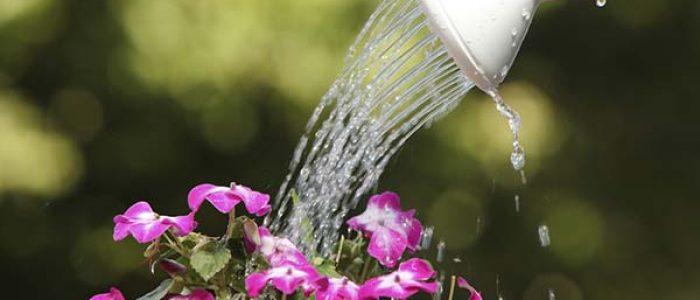 10 Hal yang Dapat Kamu Lakukan untuk Menghemat Penggunaan Air!