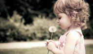 Permalink to 5 Filosofi Bunga Dandelion Ini Ajarkan Kita untuk Memperbaiki Diri