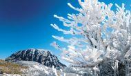 Permalink to Alamakk Indahnya Pemandangan Negeri-Negeri Berselimut Salju Ini