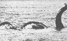 Permalink to Bener Apa Enggak Yah Keberadaan Makhluk-Makhluk Penghuni Danau Ini