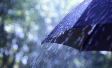 Permalink to Mengenal Lebih Jauh Apa Itu Hujan Asam dan Cara Mengatasinya