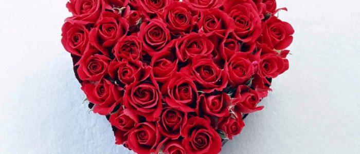 3 Filosofi Bunga Mawar Merah yang Sarat Romansa