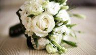 Permalink to 5 Filosofi Bunga Mawar Putih yang Punya Makna Tersembunyi