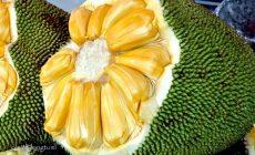 Permalink to Macam-Macam Buah Tropis dan Manfaatnya Untuk Kesehatan
