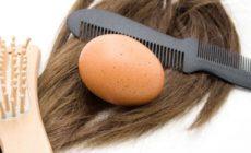 Permalink to Manjakan Rambut Anda dengan Cara Alami Berikut Ini