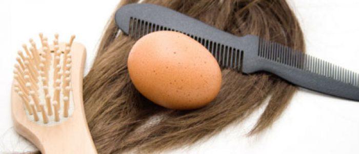 Manjakan Rambut Anda dengan Cara Alami Berikut Ini