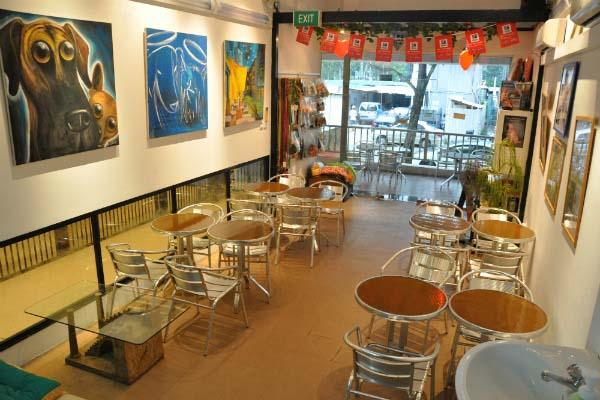Urban Pooch Cafe