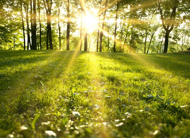 Permalink to 4 Filosofi Cahaya yang Ada dalam Diri Manusia