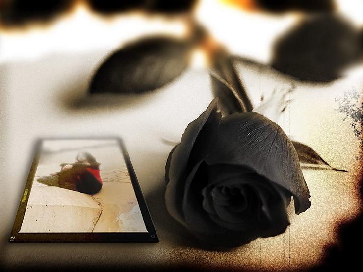 Permalink to 5 Filosofi Bunga Mawar Hitam yang Jauh dari Kata Romantis
